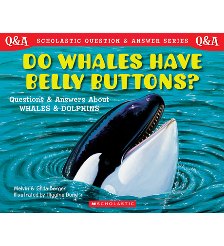 Scholastic Q & A: Do Whales Have Bellybuttons?